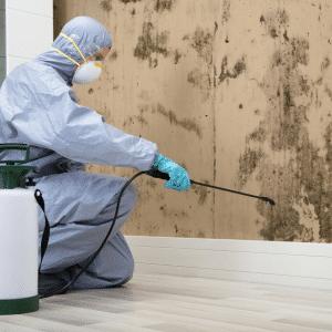 Nuestro servicio de tratamiento o exterminación de termitasse realiza con productos de última generación, siendo esto aplicado con máquinas de bajo volumen
